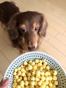 さつまいもボーロ【簡単レシピ】老犬も大好物のおやつ